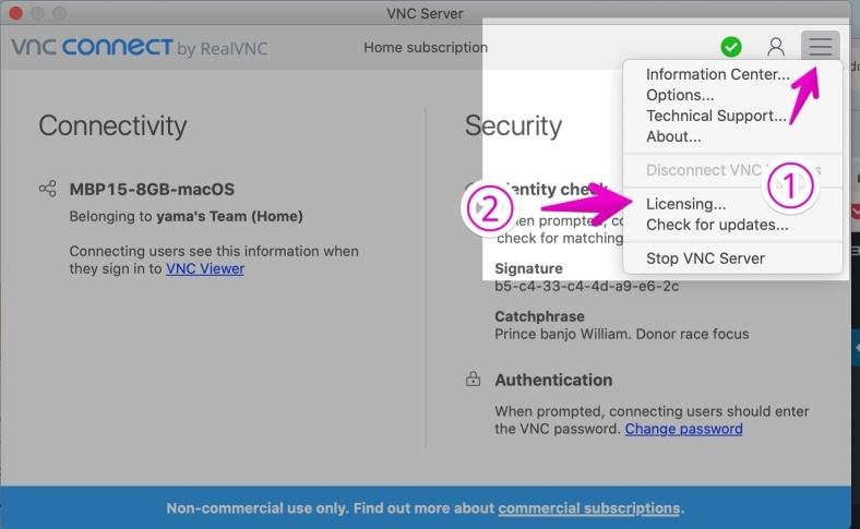 VNC Server基本画面