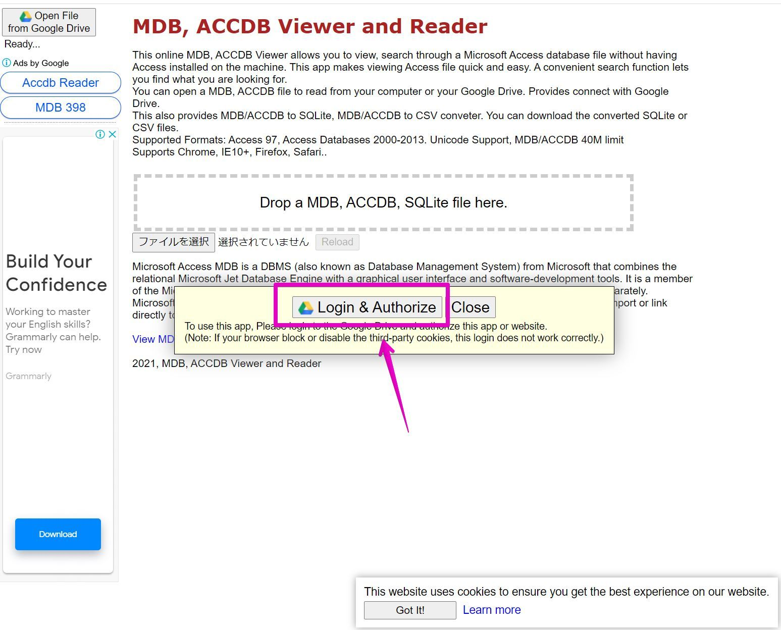 MDB, ACCDB Viewer and Reader