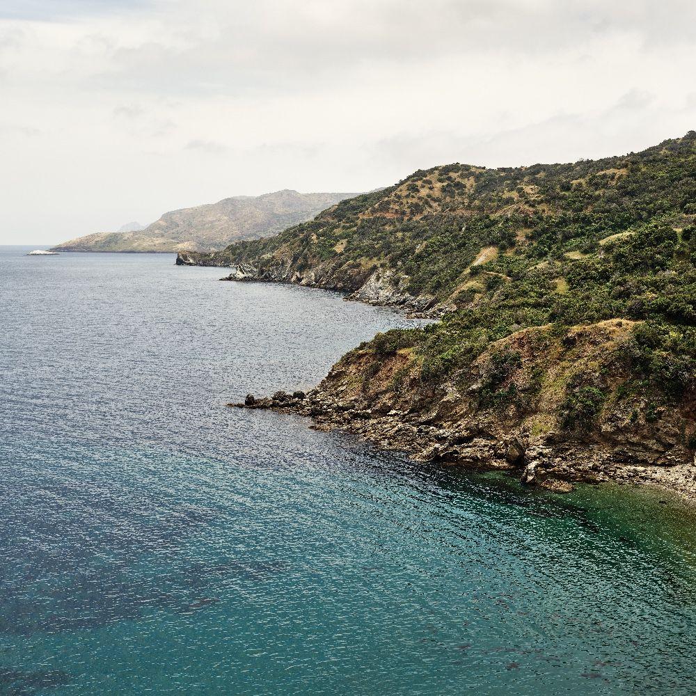 Catalina Shoreline