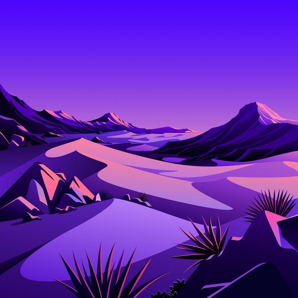 The Desert 4