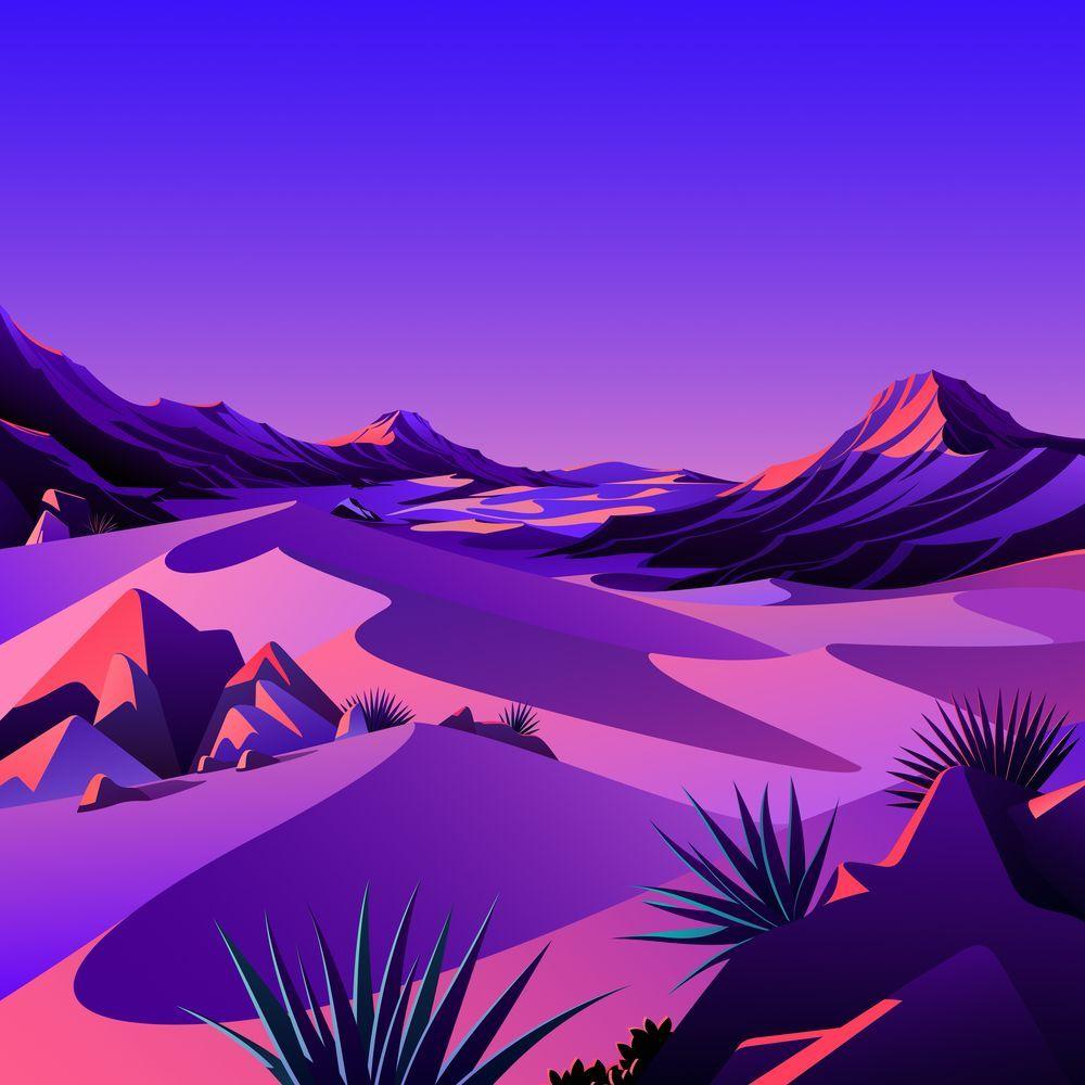 The Desert 7
