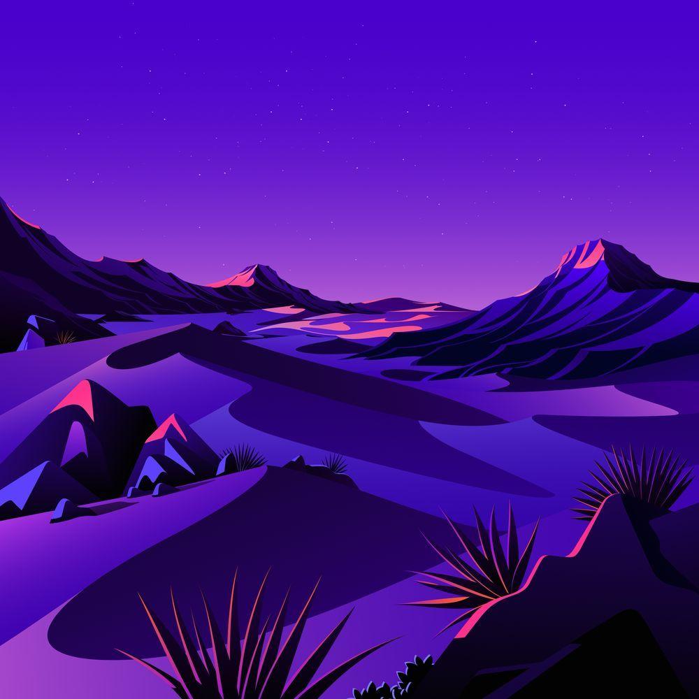 The Desert 8