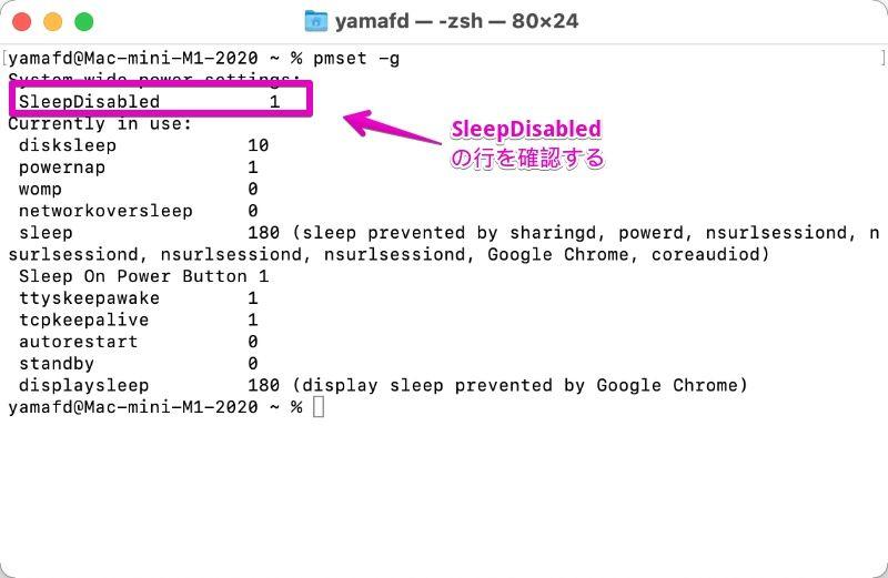 Macの「ターミナル」でコマンド「pmset -g」実行結果