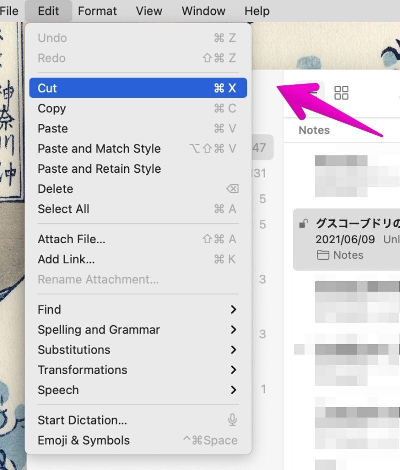 "Mac ""Notes"" app Cut & Paste the table"