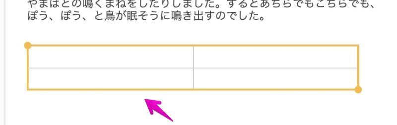 """Mac """"Notes"""" app table frame without cell contents"""