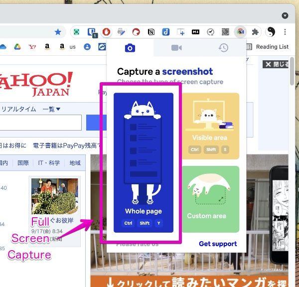 "Google Chrome Extension """"Screenshot & Screen Video Recorder"