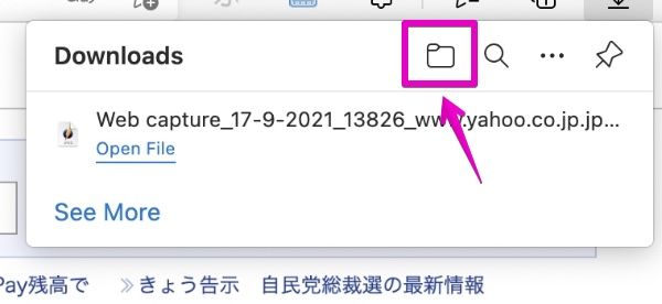 Microsoft Edge Web Capture